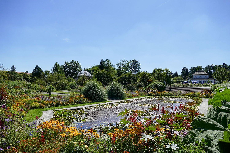 Besuch Im Botanischen Garten Und Dem Schloss Nymphenburg In München